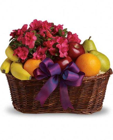 fruit-basket-sweden-36639.1384889429.386.513.jpg.html.jpeg